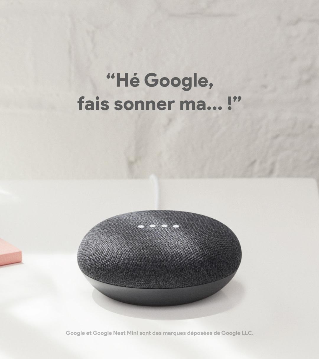 Google Module FR