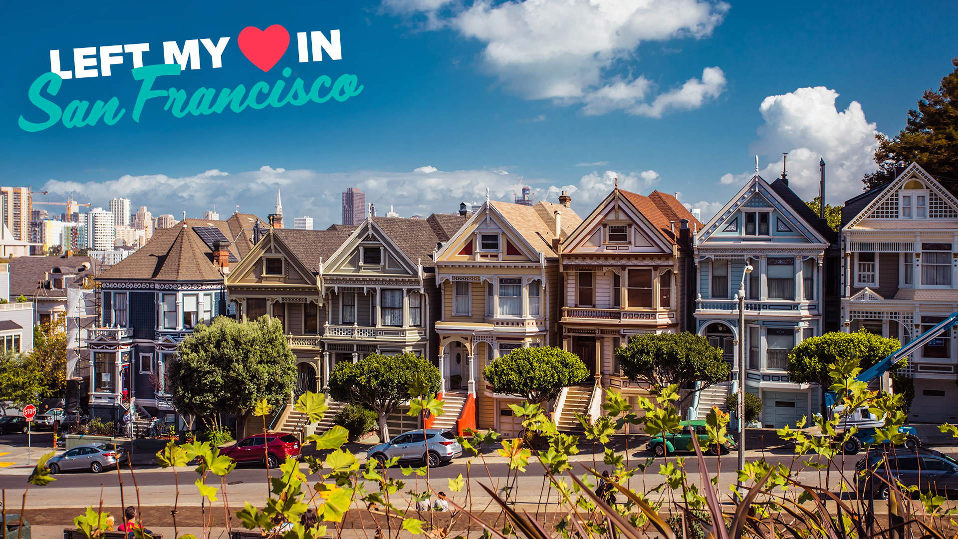 Zoom Background - San Francisco